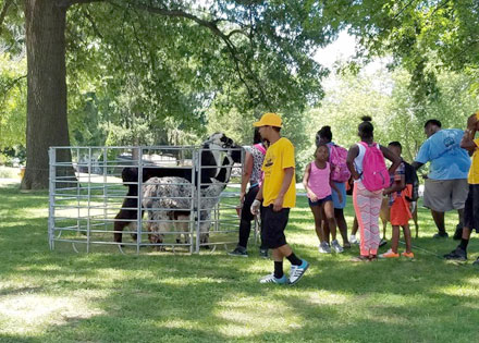 Family Fun on The Farm Event